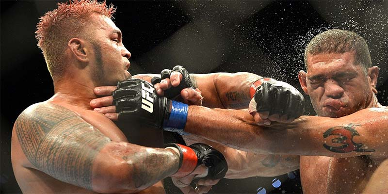 Mark Hunt the next UFC champion